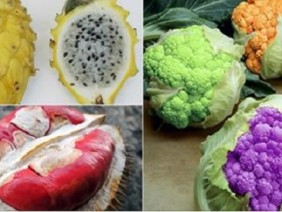 Những loại rau củ, trái cây lạ đang