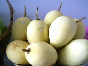 Để xoài thành ngành hàng trái cây xuất khẩu
