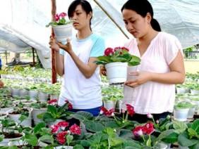 Phát triển nền nông nghiệp thông minh cho vùng Đồng bằng sông Cửu Long