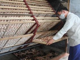 Độc đáo cách nuôi gà sinh sản kiếm 4 tỷ đồng/năm