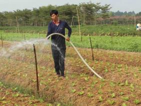 Nông dân ứng dụng công nghệ cao vào sản xuất