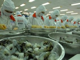 Tôm Việt Nam lại bị áp thuế chống bán phá giá ở mức cao