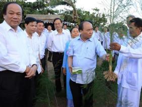 Vườn măng tây được Thủ tướng ghé thăm có gì đặc biệt?