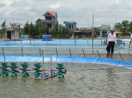 Hướng dẫn nuôi trồng thủy sản bền vững