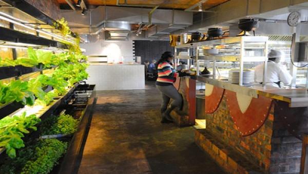 """Nhà hàng """"nước người ta"""": Tự trồng rau, nuôi cá để vừa ăn vừa ngắm"""