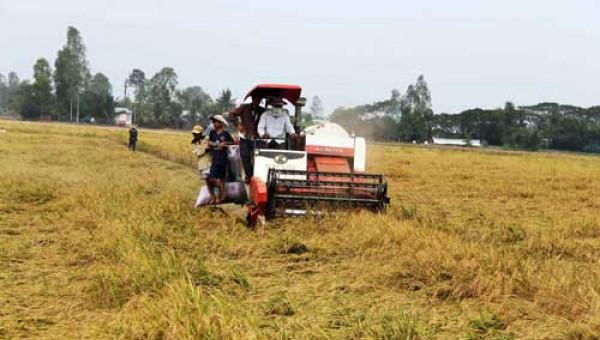Giáo sư Đại học Harvard bàn về nông nghiệp Việt Nam