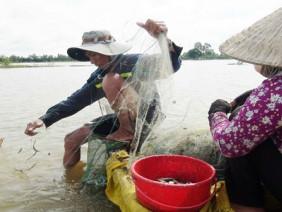 Mưu sinh mùa lũ cạn nơi đầu nguồn sông Cửu Long