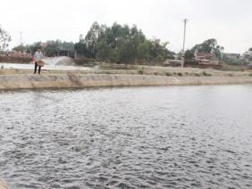 Thu 150 triệu đồng/ha/năm nhờ đổi mới nuôi trồng thủy sản nước ngọt