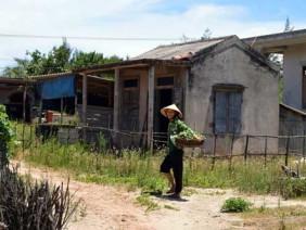 Sự cố Formosa kéo lùi lộ trình nông thôn mới