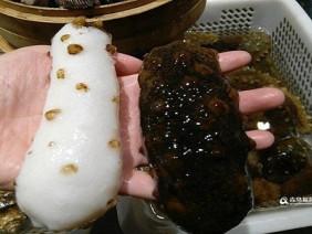 Hải sâm trắng quý hiếm dài 18 cm ở Trung Quốc