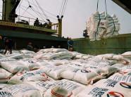 Thêm doanh nghiệp xuất khẩu gạo vào Mỹ bị cảnh báo