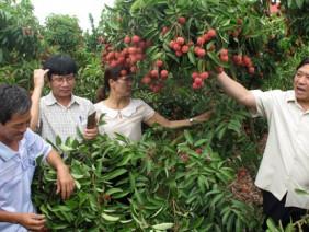 Hội Nông dân VN: Đổi mới, tự tin cùng nông dân trên đường hội nhập