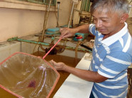 Thay vì ở ruộng, nông dân Sài thành nuôi đại trà Artemia trong nhà