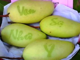 ĐBSCL: Năm nay, trái cây độc, lạ trưng Tết sẽ hiếm hàng