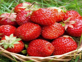 6 thực phẩm chống nếp nhăn siêu hiệu quả