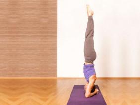 Tập tư thế trồng chuối yoga để chữa bách bệnh
