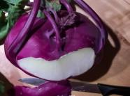 Trồng su hào tím tại nhà cho sắc đẹp lại bổ dưỡng