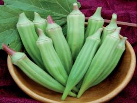 Trồng cây đậu bắp có khó như bạn nghĩ?