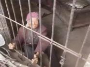Không phân biệt nổi đây là chuồng lợn hay là căn phòng con trai và con dâu nhốt mẹ già 92 tuổi