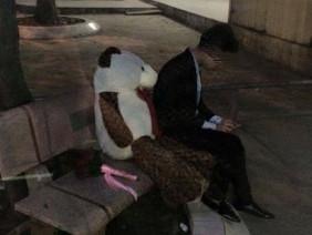 Mang hoa, gấu đến trường chờ hàng giờ để tỏ tình, chàng trai nhận cái kết buồn