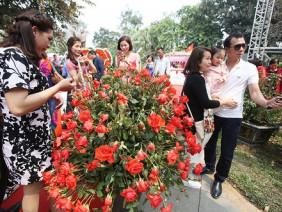 BTC lễ hội Hoa hồng coi thường dư luận khi báo cáo