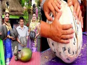 Dân làng tụ tập bổ quả dừa 39 năm tuổi, ai cũng khóc thét khi thấy thứ bên trong