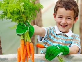 Tết Thiếu nhi: 6 loại rau quả tuyệt vời bạn nên cùng con gieo trồng