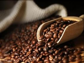 Giá cà phê, cao su, điều... tăng cao, xuất khẩu nông sản