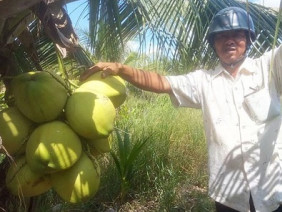 Làm giàu ở nông thôn: Làm đa canh nhanh có tiền