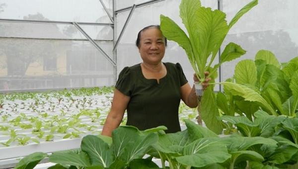 Cụ bà U70 trẻ lại chục tuổi nhờ vườn rau thủy canh đẹp như mơ