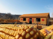 Độc đáo ngôi nhà 48m2 đẹp như dát vàng, được xây từ 20 ngàn bắp ngô