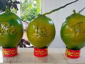 Cận cảnh 3.000 trái dừa hồ lô in chữ nổi có gì mà giá 600.000đ/trái