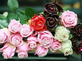 """Phát sốt với hoa hồng kim cương """"đẹp-độc-lạ"""", mỗi bông giá 250.000đ"""
