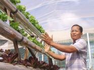 Giới trẻ miệt vườn sôi nổi làm nông nghiệp 4.0