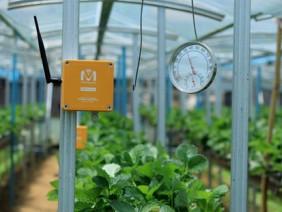 Chìa khóa cho nông nghiệp bền vững: Kỹ thuật số giúp giảm chi phí