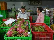 Xuất khẩu trái cây sang Mỹ phải vượt qua 5 tiêu chuẩn này