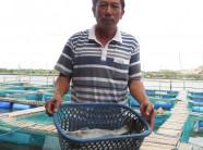 Tỷ phú tôm cá, nuôi tận gốc bán tận ngọn bên đầm Cù Mông