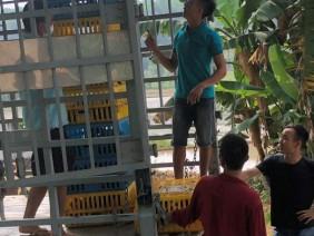 """Phú Thọ: Sẽ trao lại 5.700 gà cho dân sau vụ """"hỗ trợ gà nhiễm dịch"""""""