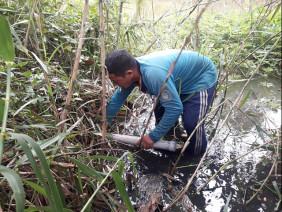 Cà Mau: Thoát cảnh bần hàn nhờ tuyệt chiêu đặt trúm bẫy lươn đồng