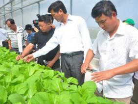 Chương trình Tự hào Nông dân Việt Nam: Bước đi để mở tầm nhìn