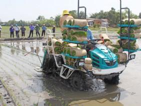 Đề xuất miễn thuế đất nông nghiệp: Đầu tư thoả đáng cho tam nông