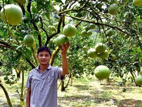 Giúp nông dân tránh cảnh 'được mùa, mất giá'