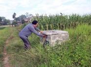 Những cánh đồng không vỏ thuốc bảo vệ thực vật