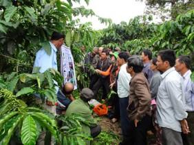 Khuyến nông viên cần tham gia chuỗi giá trị nông sản