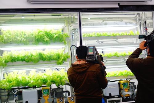 nông nghiệp công nghệ cao nhật bản