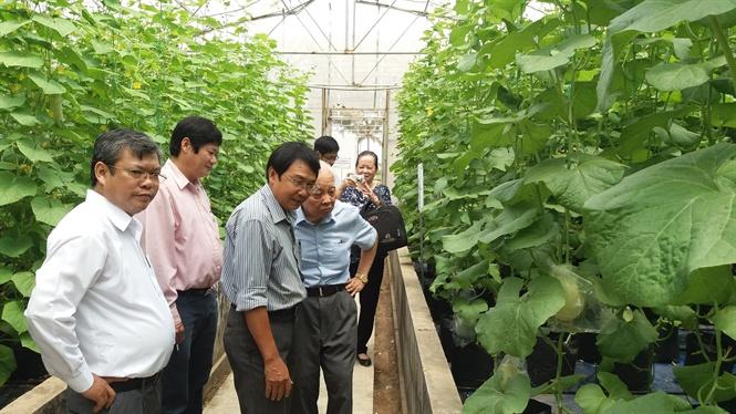 nông nghiệp công nghệ cao việt nam